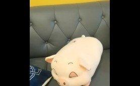 小奶猫-清水美奈(2)